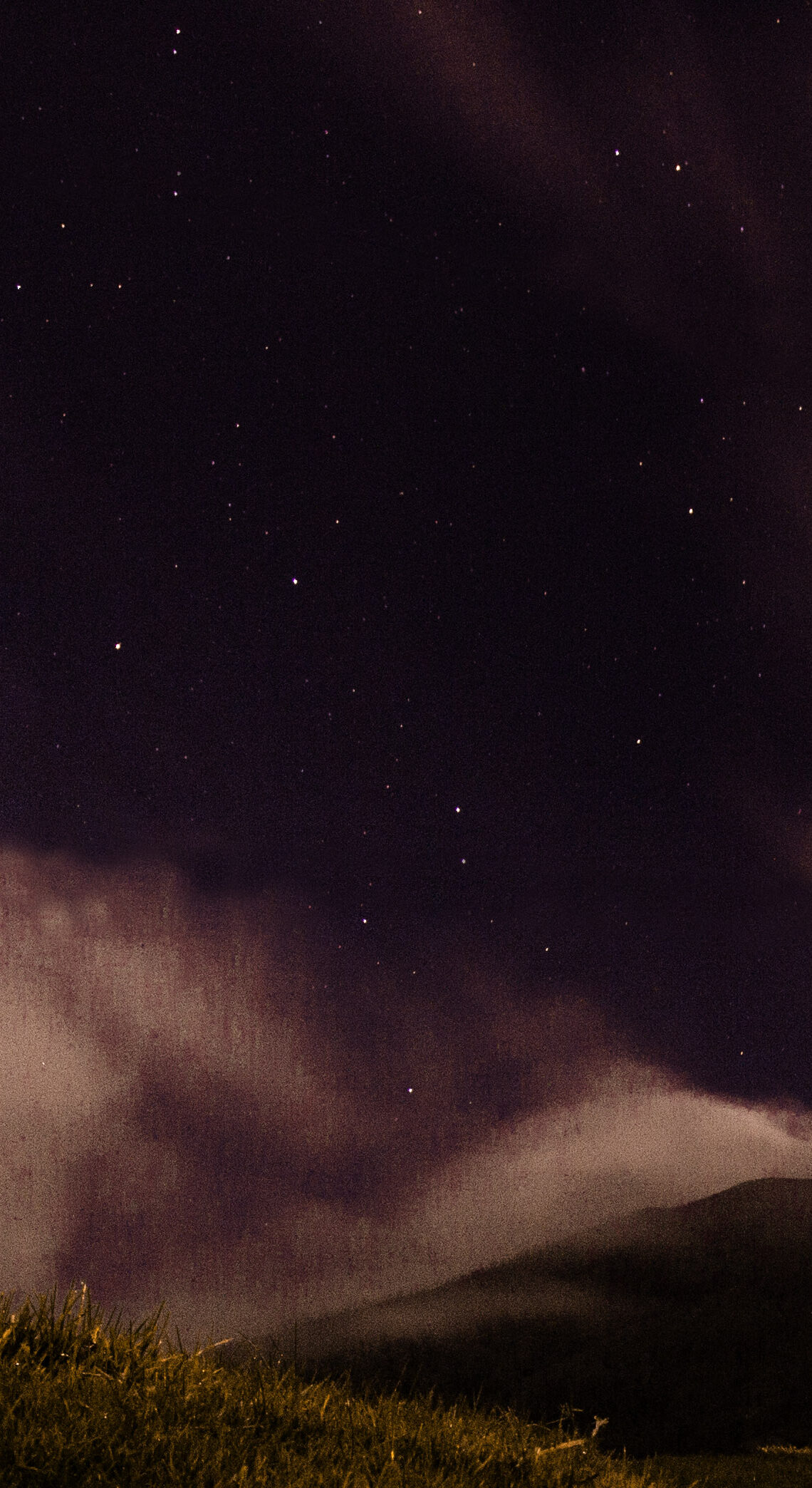 Noche Negra